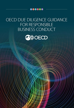 OECD-Due-Diligence-Guidance-for-Responsible-Business-Conduct-250